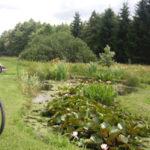 <b>Cyklo: Dolní Skrýchov, Karlov, Lovětín - okruh</b>