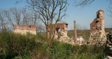 Dražice – zřícenina gotického hradu