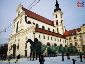 Brno van trhy19 03
