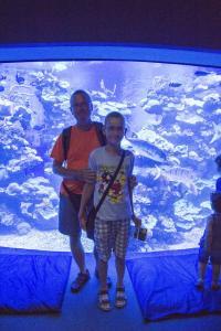 Palma aquarium 11