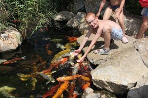 Palma aquarium 13