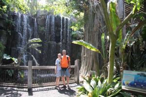 Palma aquarium 14