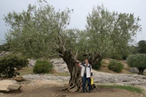 Pont du Gard 01