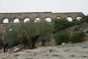 Pont du Gard 02